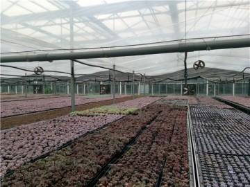 北京花卉玻璃温室